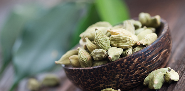 Cardamom And The Hunger For Life