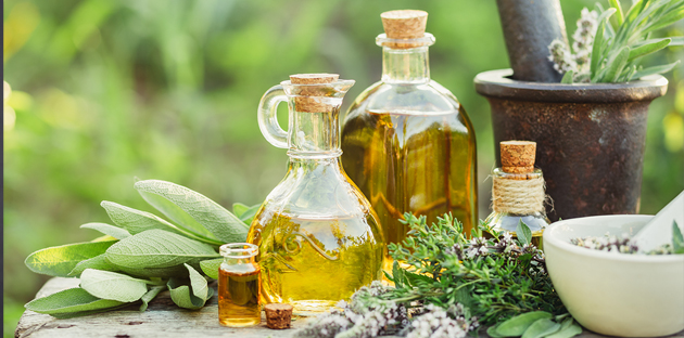 """""""How much of an herb do I give?"""" A discussion on dosage of medicinal plants"""