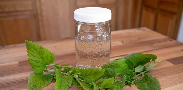 Hydrosol & Flower Waters for Healing, Beauty, & Enjoyment